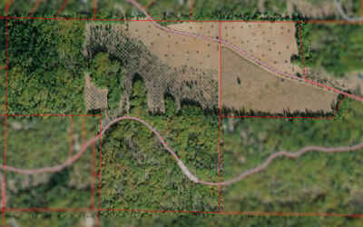 Cash-Out 170 Acre Rural Ag Parcel in Lake County